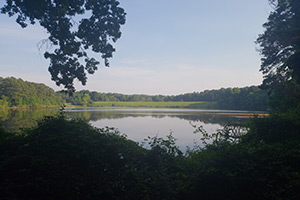 Shelly Lake